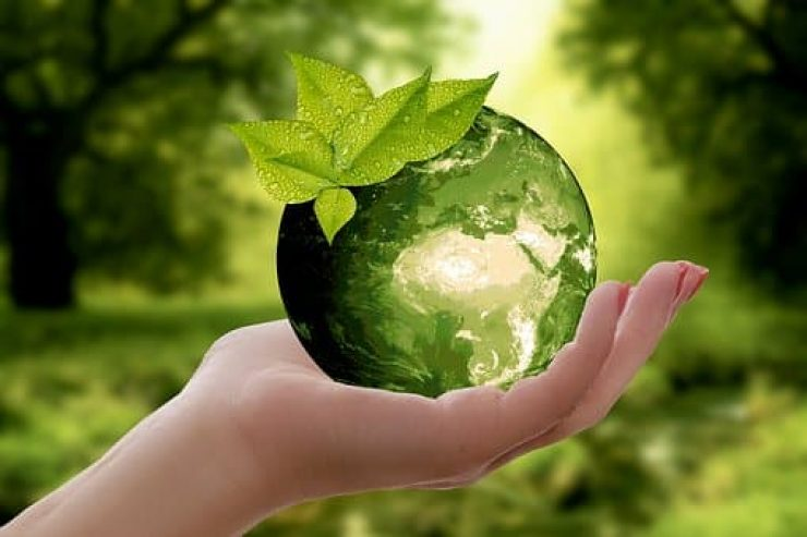 A Sustainable Living Guide For Students You Should Follow