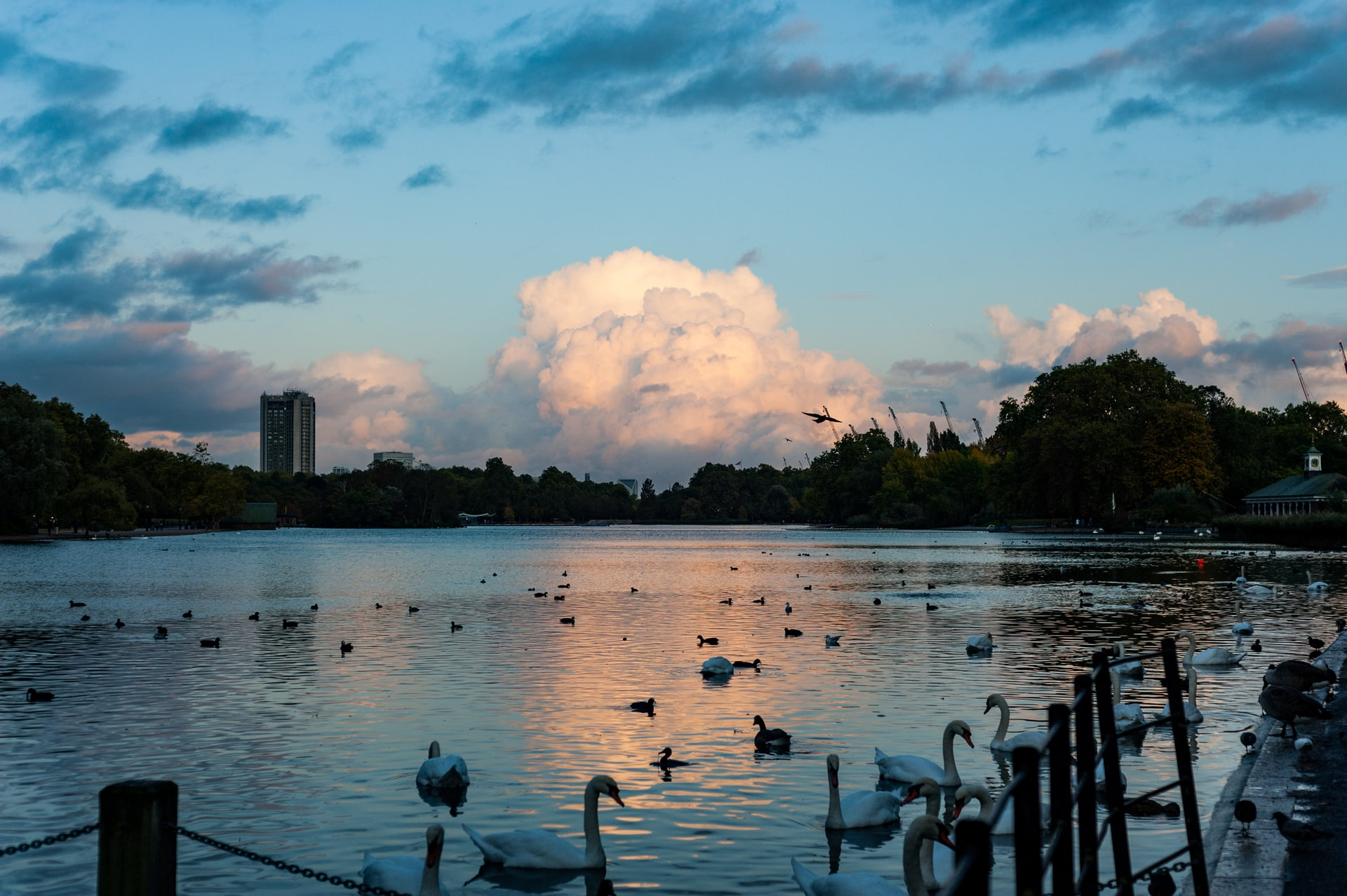 Top 10 Parks In London